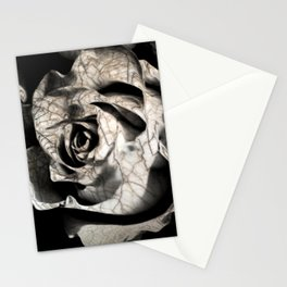 Rose forming from light and shadows Stationery Cards