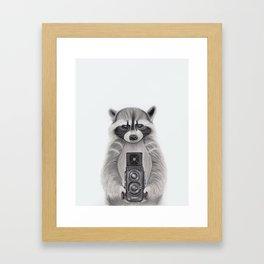 Raccoon Measuring Light / Mapache Midiendo la Luz Framed Art Print