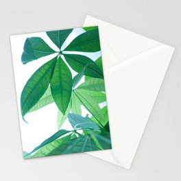 Pachira aquatica #1 #decor #art #society6 Stationery Cards