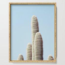 Desert, Cactus Serving Tray