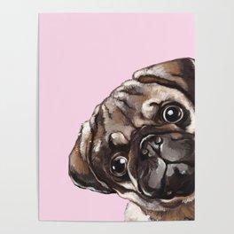 Sneaky Melancholic Pug in Pink Poster