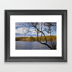 Hall Lake in Autumn No 0118 Framed Art Print