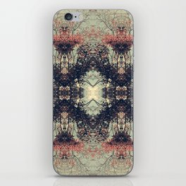 The Enchanted Forest No.8 iPhone Skin