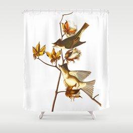Pewit Flycatcher Bird Shower Curtain