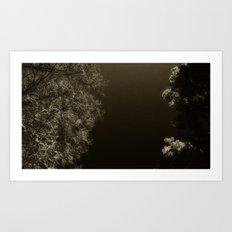 under night Art Print