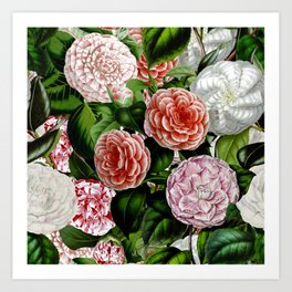 Vintage & Shabby Chic Green Large Dark Floral Camellia  Flowers Watercolor Pattern Art Print
