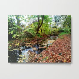 autumn path by the river Metal Print