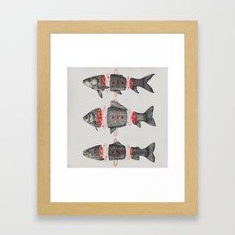 Sashimi All Framed Art Print