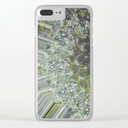 °//*Substantiated ¤ {In D/eams} ¤ •f Sp/ing°//* V.2.01 Clear iPhone Case