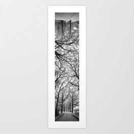 Branching Panorama Art Print