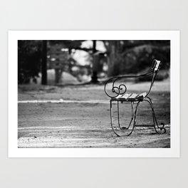 Solitary Park Bench Art Print