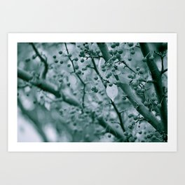 Black and White Berries Art Print