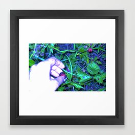 RASBERRY Framed Art Print
