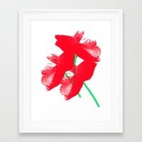 poppies Framed Art Prints featuring Poppies by Vitta