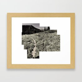 Cascadian Steps Field of Vectors Framed Art Print