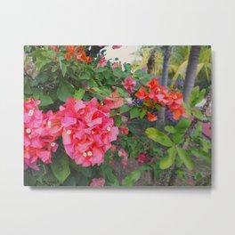 Flowers at Uxmal Metal Print