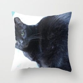 Simon the Black Halloween Sanctuary Cat Throw Pillow