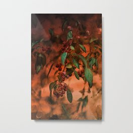 Red Berry Tree at Sunset Metal Print