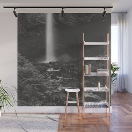 Latourell Falls Waterfall - Black and White Wall Mural