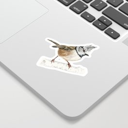 European crested tit, Lophophanes cristatus Sticker