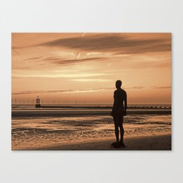 The Over-looker Canvas Print
