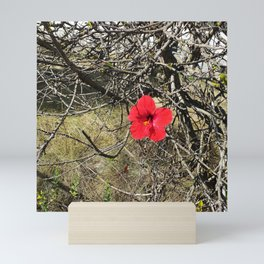 Being Alive - Red Hibiscus Flower Mini Art Print