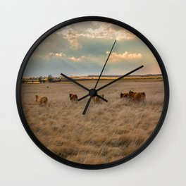 Cows Among the Grass - Cattle Wade Through a Field in Texas Wall Clock
