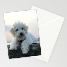 Teddy At Sunset Stationery Cards