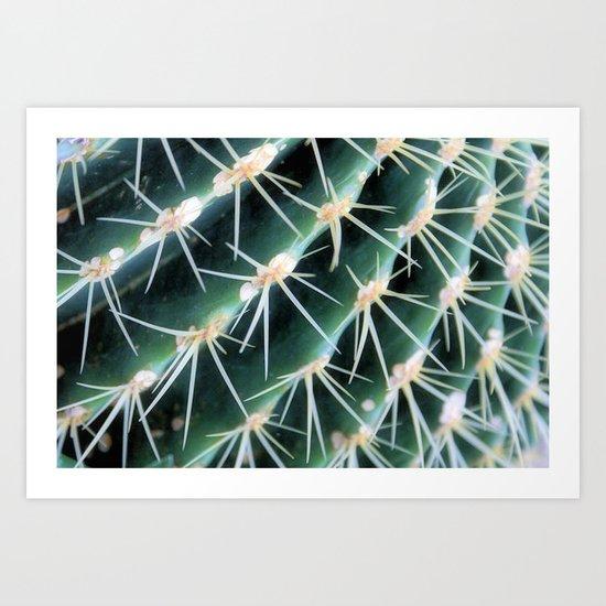 Golden Barrel cactus Art Print