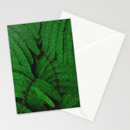 Layers Of Wet Green Fern Leaves Patterns In Nature Stationery Cards