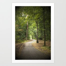 Forest path Art Print