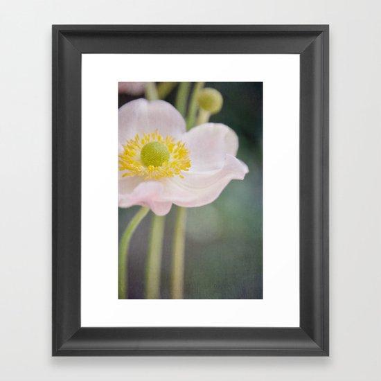 Anemone love II Framed Art Print