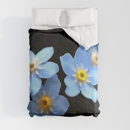Forget Me Nots Remembrance Flowers On Black Background Comforters