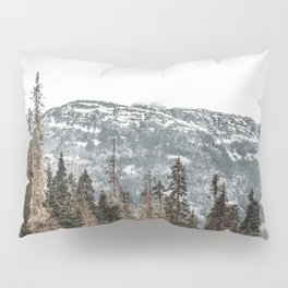 Sawtooth Canopy Pillow Sham