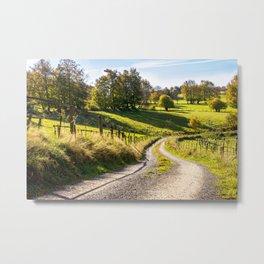 Green Meadows Landscape Metal Print