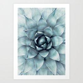 Agave Print, Cactus Print, Succulent Art Art Print