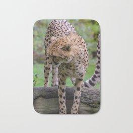 cheetah portrait fine art Bath Mat