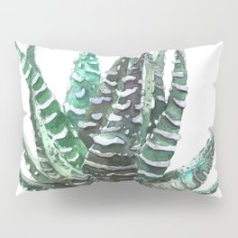 Haworthia Pillow Sham