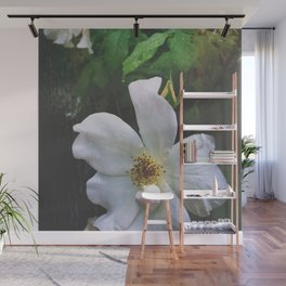 Flowers at Dusk Wall Mural
