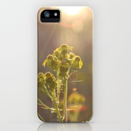 Let Light In iPhone Case