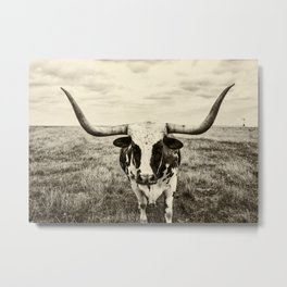 Lone Longhorn Metal Print