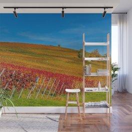 Sonoma Valley Vineyard California Wall Mural