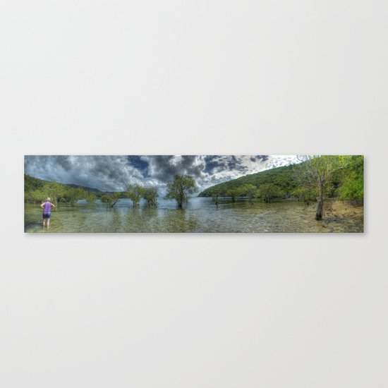 Butterfly Bay in colour Canvas Print
