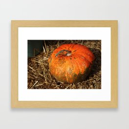 Pumpkin Says Pick Me Framed Art Print