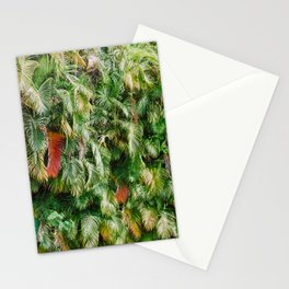 In Love with the Fall in the Tropics Stationery Cards
