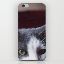 Puss In Boots iPhone Skin