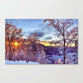 Icy Forest Awakens Canvas Print