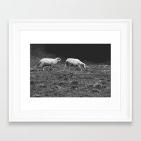 sheep Framed Art Prints featuring Sheep by Pati Designs