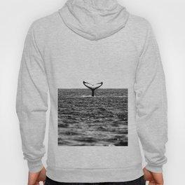 Whale Hoody