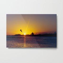 Tropical Pelican Sunset Metal Print